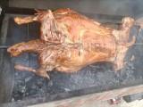 平谷上門烤全羊流動烤全羊燒烤海鮮