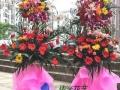 南通通州海门专业鲜花店开业花篮定制市区送货上门