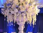 西安 会议鲜花 绿植批发 鲜花速递 发财树