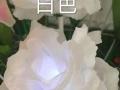 LED仿真玫瑰花郁金香花海展览婚庆布场灯光造型布置