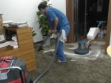 朝陽區地毯清洗公司 北京清洗真皮沙發/布藝沙發清潔