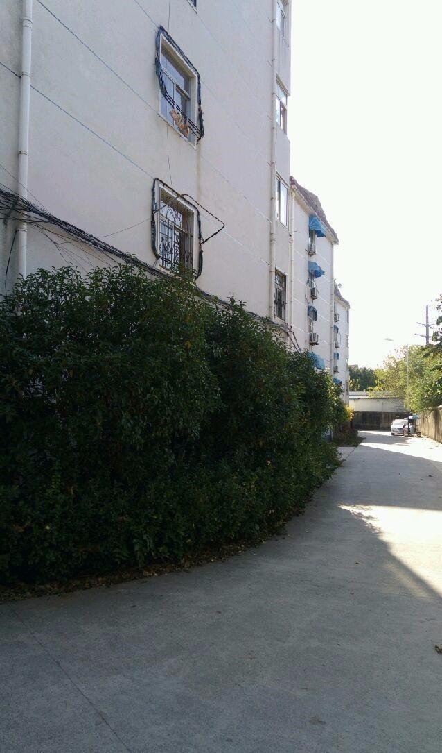 水湖 翰林院旁三中宿舍 3室 90平米有房产证 出售