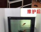 承接各类鱼缸清洗 鱼缸安装 搬运
