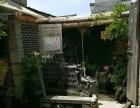 宏村 景区主线正街 酒楼餐饮 商业街卖场