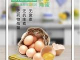 怀孕补叶酸就吃广东万家益叶酸月婆蛋富硒蛋无公害鸡蛋