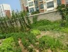 弘昌运动城绿荫花市对面 仓库 2200平米