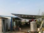 蓝田 白鹿原孟村附近 家庭农场出售转让营联 45000平