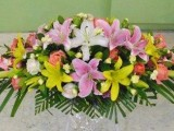 開業花籃綠植預訂鮮花禮盒節日鮮花各類鮮花速遞 花店送貨上門