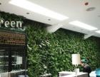 云南华都生物科技专业承接景观工程、园林绿化业务