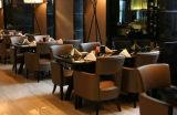 咖啡厅用的沙发哪里有卖上海雅莉莎厂家定做咖啡厅沙发家具