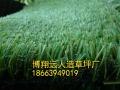 锦州人造草坪供应厂家