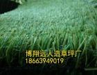延边人造草坪供应厂家