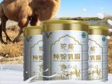 福建三明市骆驼牛奶生产厂家,厂家直销欢迎来聊聊