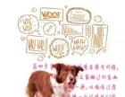 和狗狗愉快的生活。训练不再烦恼