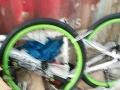 全新铭特山地自行车