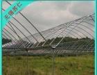江门温室钢架大棚建设,连体菜棚加盟 农业用具
