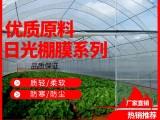 大棚膜白膜养殖隔热加厚抗老化PE原料膜蔬菜消雾无滴膜
