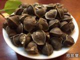 揭晓辣木籽对身体状况的判断标准