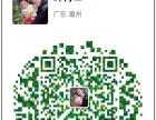 又木红枣姜茶加盟 淘宝代理 投资金额 1万元以下