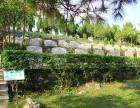 贵阳凤凰山公墓,惠水龙王山墓地购买管理处电话