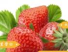 果缤纷教你挑选最合适的水果送给最爱的TA