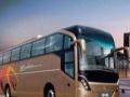 大中巴5-55长短途包车、会议用车、商务用车优惠中