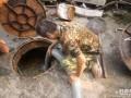 小兰工业园下水道疏通化粪池吸粪 管道清洗