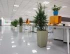 苏州金阊办公室植物盆景出租苏州花卉租赁植物租赁专家