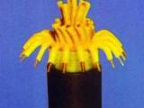 DJYPV总屏蔽聚氯乙烯护套电子计算机用电缆
