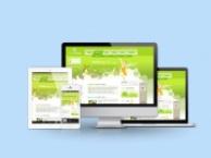 十年经验 专业网站建设 创意设计理念 定制开发