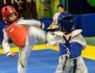 跆拳道 少儿武术专业培训就在天行健武道馆