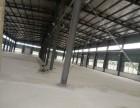 吴家山独门独院全新标准钢构厂房3000平整体出租