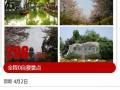 宣城到无锡鼋头渚、苏州同里汽车二日游仅需298元/人