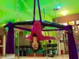 宁波舞蹈培训 专业成人培训学校 全国连锁培训