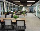 为制定标准的企业而准备 亚太中心新房新家具免中介