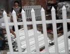 供应西藏PVC护栏 塑钢栅栏 优质塑钢围栏