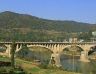 四川省巴中市36亩旱地出租