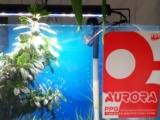 品牌超白鱼缸低价出售