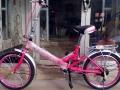 全新20寸折叠自行车赔钱处理了,240元