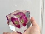 供应标本水晶胶
