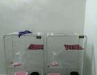 荆州市沙市区家庭式宠物寄养服务,桃源家宠物寄养
