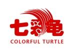 浅谈七彩龟美缝吸甲醛