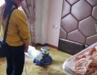 专业油烟机洗衣机空调热水器清洗、地毯清洗