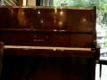 宁波买钢琴到和声琴行/原装二手雅马哈卡哇伊专卖店