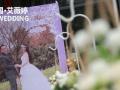 十月二日国庆期间主持人欢迎定婚庆