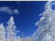 哈尔滨、二浪河、雪乡、长白山、老里克湖七日游