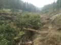 青龙峡漂流景区附近 土地 6000平米