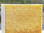 蜂巢蜜 500g   蜂巢批发 多买可优惠  蜂巢蜂蜜