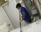专业白蚁防治,家庭、企业、酒店除白蚁消杀 除甲醛