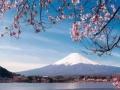 日本单次旅游、五年多次往返、百分百出签、无前期